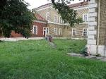 Košice - Prístavba vstupných a verejných priestorov k Verejnej knižnici Jána Bocatia